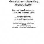 idaho-granting-parental-guardianship-poa-form